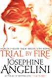 Trial By Fire (The Worldwalker Trilogy, Band 1)