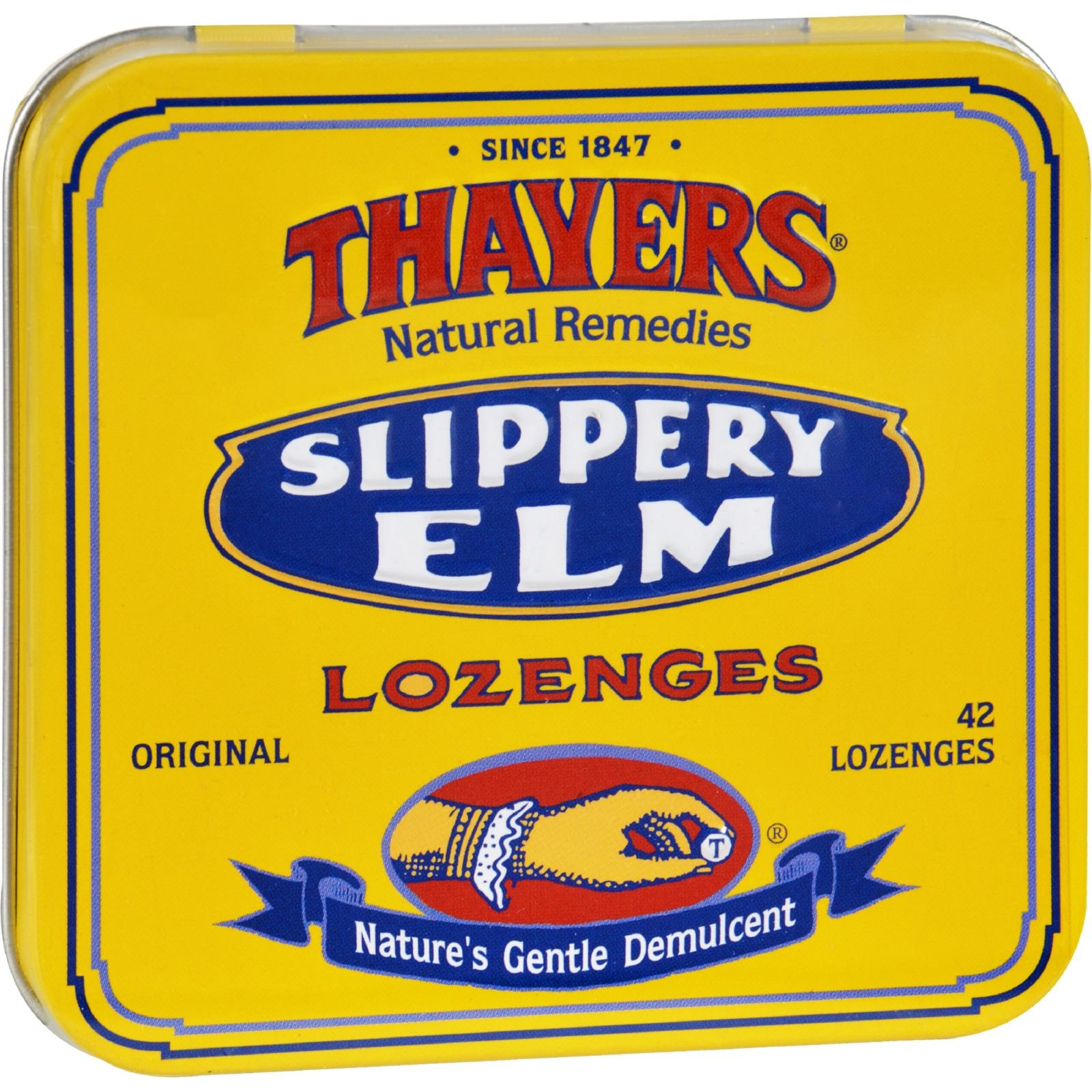 2Pack! Thayers Slippery Elm Lozenges Original - 42 Lozenges - Case of 10 by Sore Throat