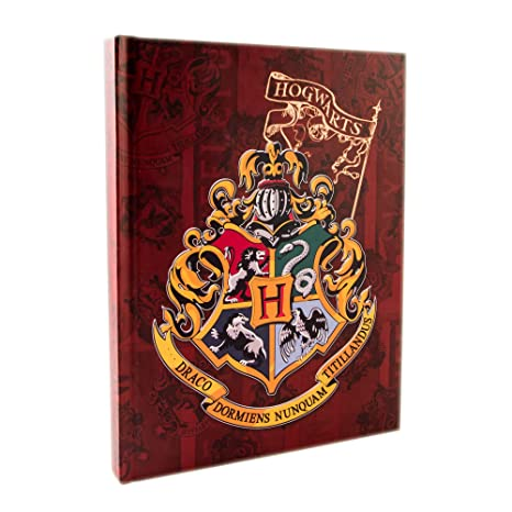 Amazon.com: Silver Buffalo HP9850 Harry Potter Hogwarts ...