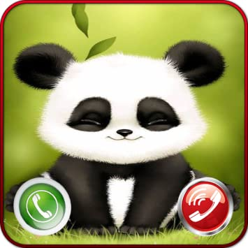 Amazoncom Fake Call From Panda Kid Prank Caller Id Appstore For
