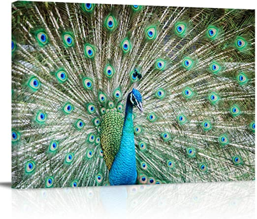 Beautiful Green Peacock Oil Painting Picture Printed on Canvas Wall Art Decor