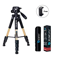 """BONFOTO Q111 Lightweight Camera Tripod 55"""" Pan Head Stand with Phone Holder Mount & Carry Bag for Projector Gopro Tablet Smartphones YouTube Live Chat DSLR EOS Canon Nikon Sony Samsung(Gold)"""