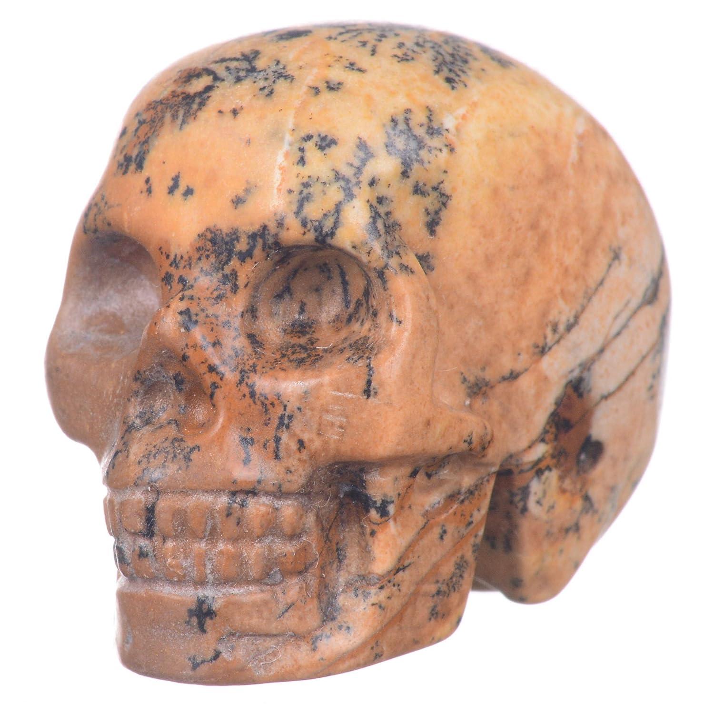 Mineralbiz 1.3-1.5 Natural Picture Jasper Hand Carved Crystal Skull, Crystal Human Skull Head, Crystal Healing Reiki