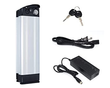 FuShield - Carcasa de batería de Litio Recargable para Motor ...