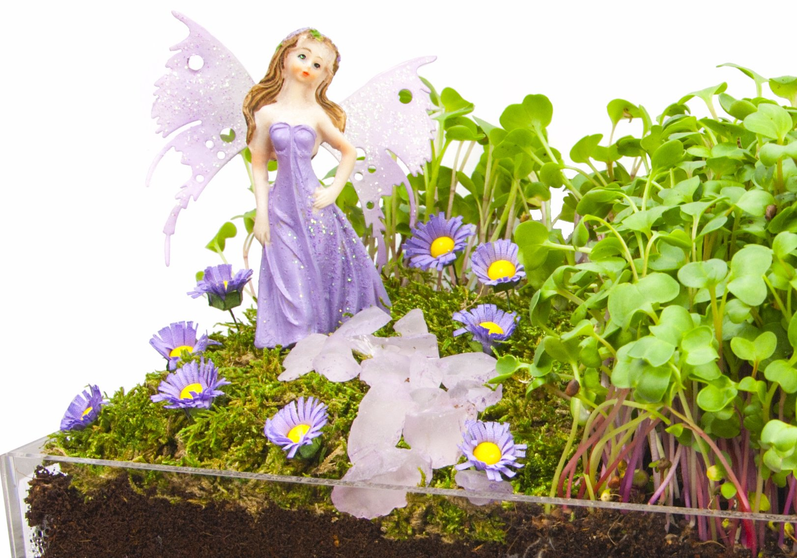 Window Garden Edible Fairy Garden Kit with an Enchanting Fairytale and Accessories by Window Garden (Image #1)