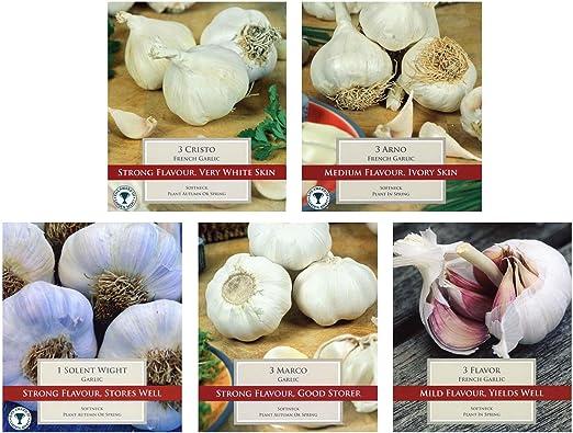 Mixed garlic 10 cloves