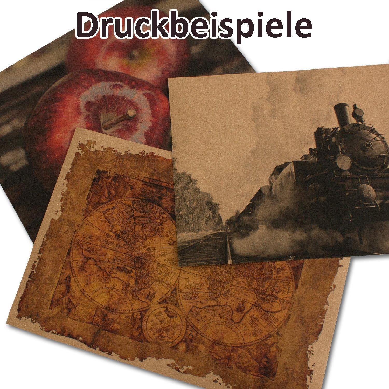 peso: 285 g//m/² dimensioni: 210 x 297 mm 75 St/ück 285 g//m/² formato DIN A4 Cartoncini di carta riciclata cartoncini colore marrone naturale
