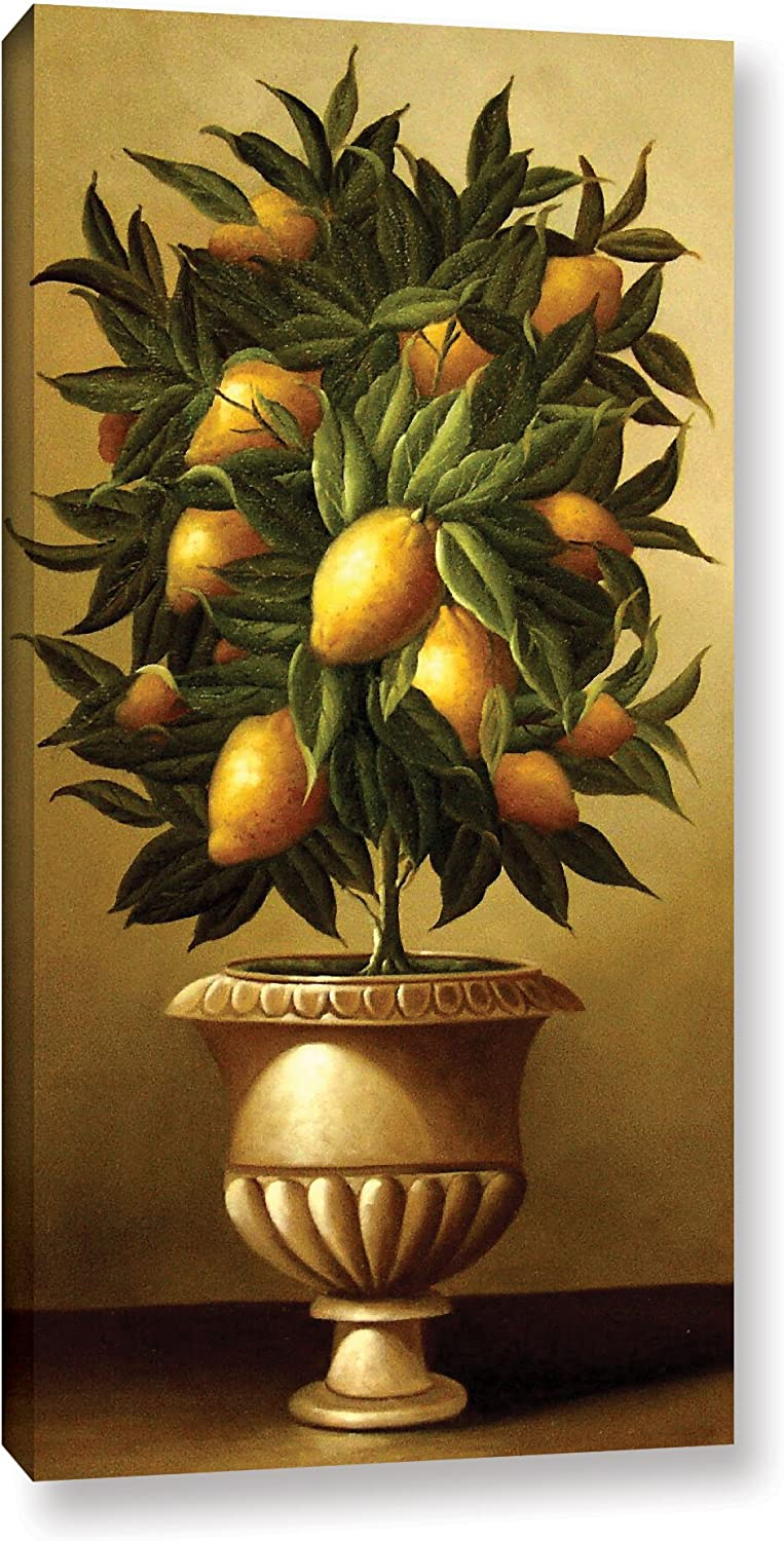 Amazon Com Welby Lemon Topiary In Marble Urn Gallery Wrapped Floater Framed Canvas 24x48 Posters Prints