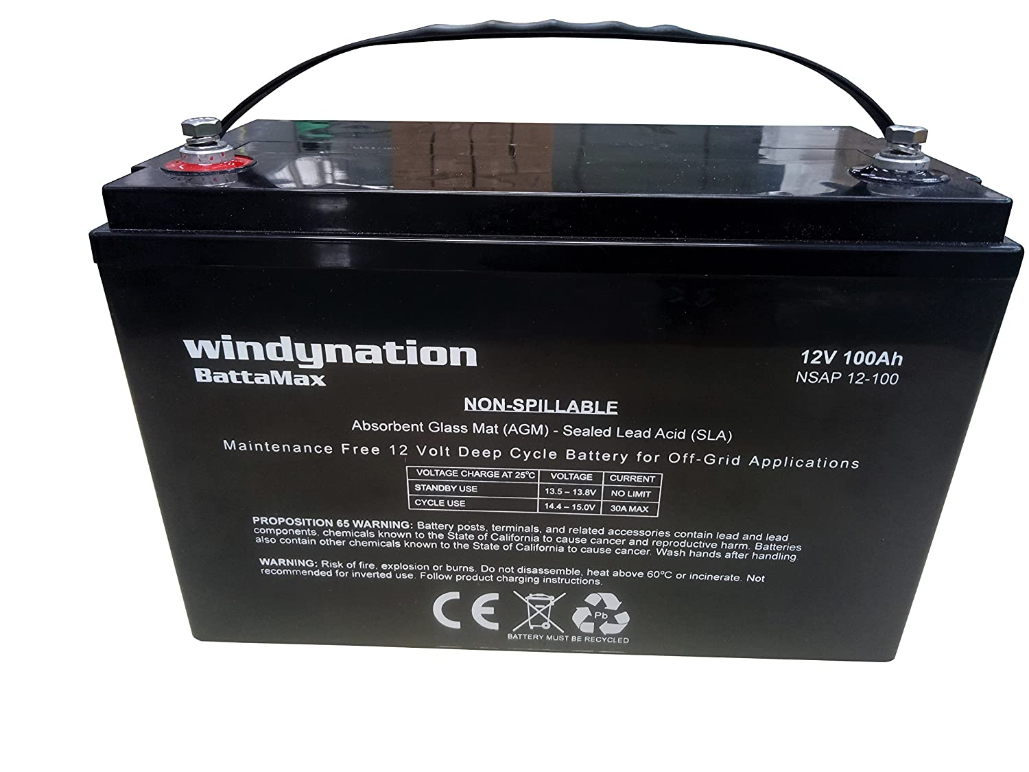 WindyNation 12V