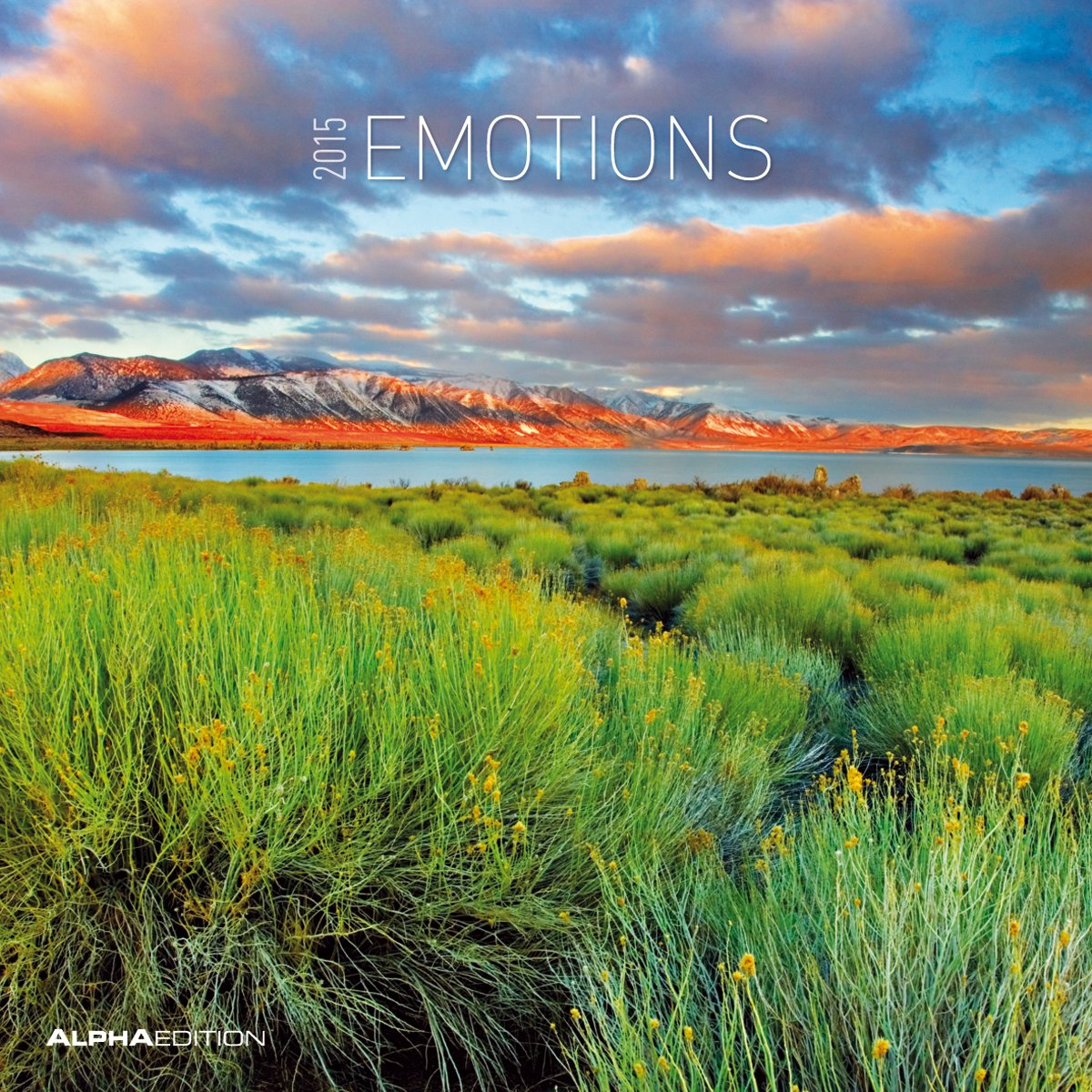 Emotions 2015 - Emotionen - Broschürenkalender (30 x 60 geöffnet) - Landschaftskalender