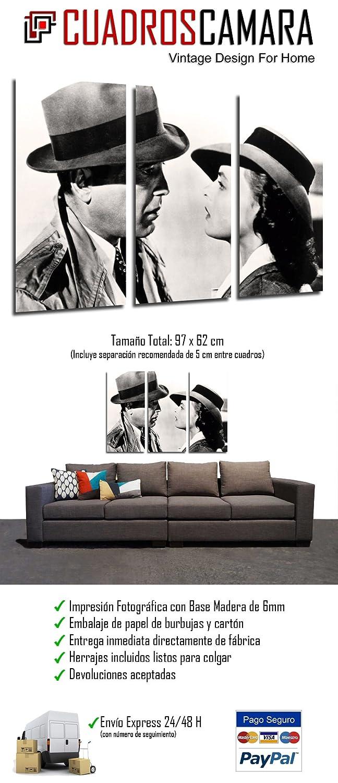 Amazon.com: Pictures Camera Poster Photograph, Multi ...