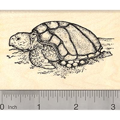 Nesting Sea Turtle Rubber Stamp, Laying Eggs on The Beach: Arts, Crafts & Sewing
