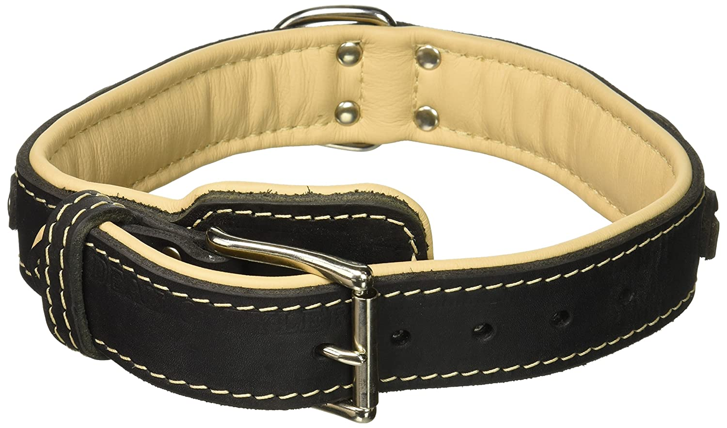 Dean & Tyler Dean's Legend Dog Collar with Brown Padding and Chrome Plated Steel Hardware, 20 by 1-1 2-Inch, Black