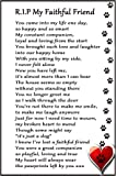 "Dog Bereavement Gift Magnet - RIP My Faithful Friend - dog loss, sympathy, memorial Flexible Magnet 6"" x 4"""