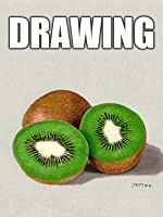 Time Lapse Drawing of Kiwi