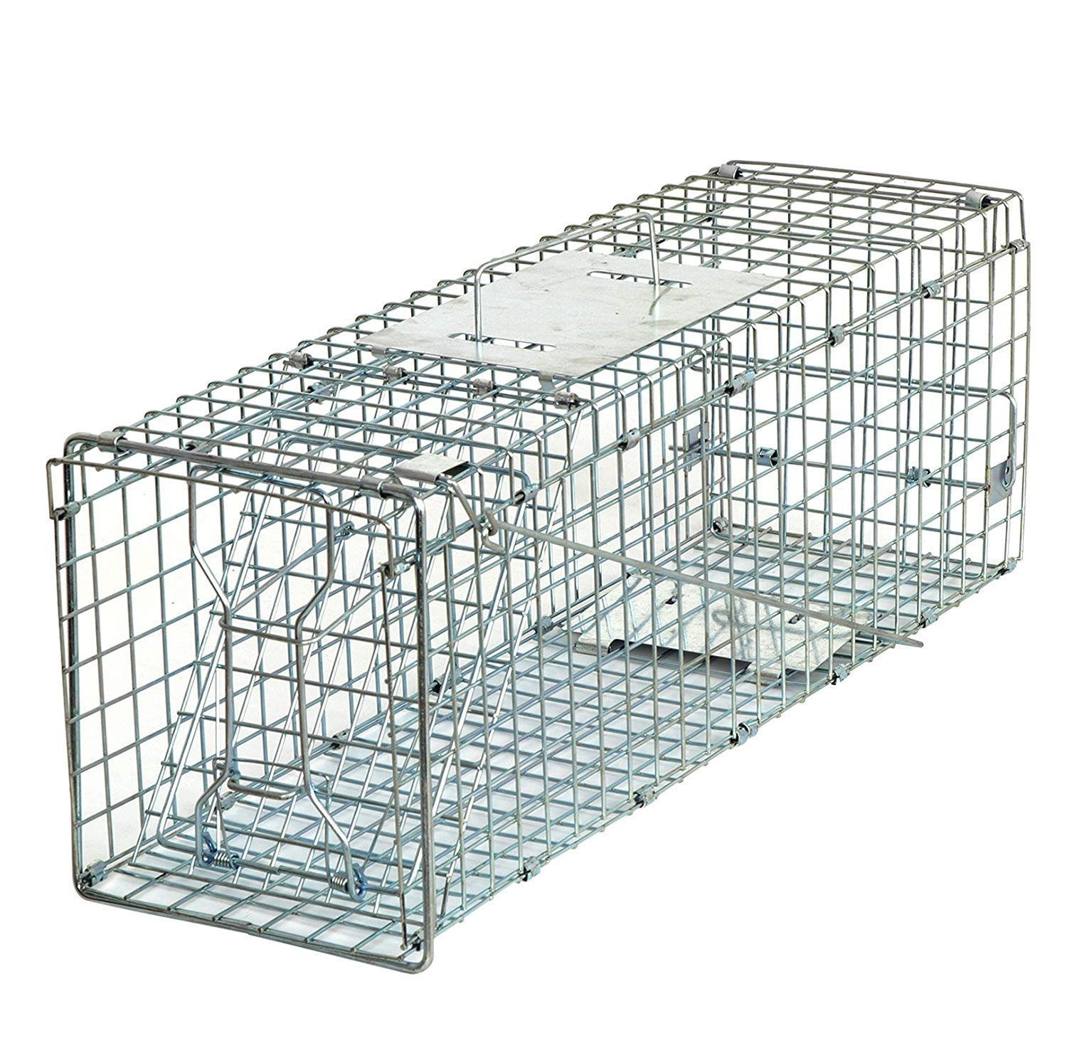 Mole Squirrel Groundhog 24 Silver Stray Cat Raccoon Chicken HomGarden Live Animal Trap 24inch Catch Release Humane Rodent Cage for Rabbits Opossum Skunk /& Chipmunks Gopher