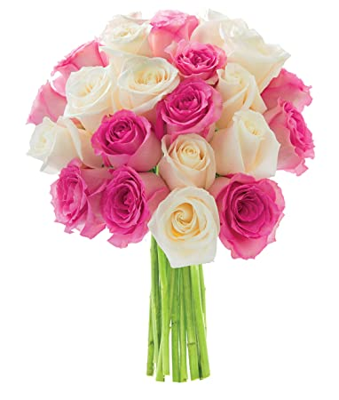 Amazon Kabloom Cupcake Pink And White Roses Dozen And A Half