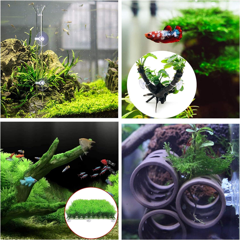 Plants YiePhiot 16 Pcs Aquarium Suction Cups with 16 Pieces Adjustable Zip Ties for Aquarium Fish Tank Binding Moss Shrimp Dodging Nest