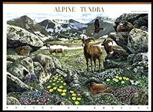 Alpine Tundra (Nature of America): Full Sheet of 10 x 41-Cent Postage Stamps, USA 2007, Scott 4198