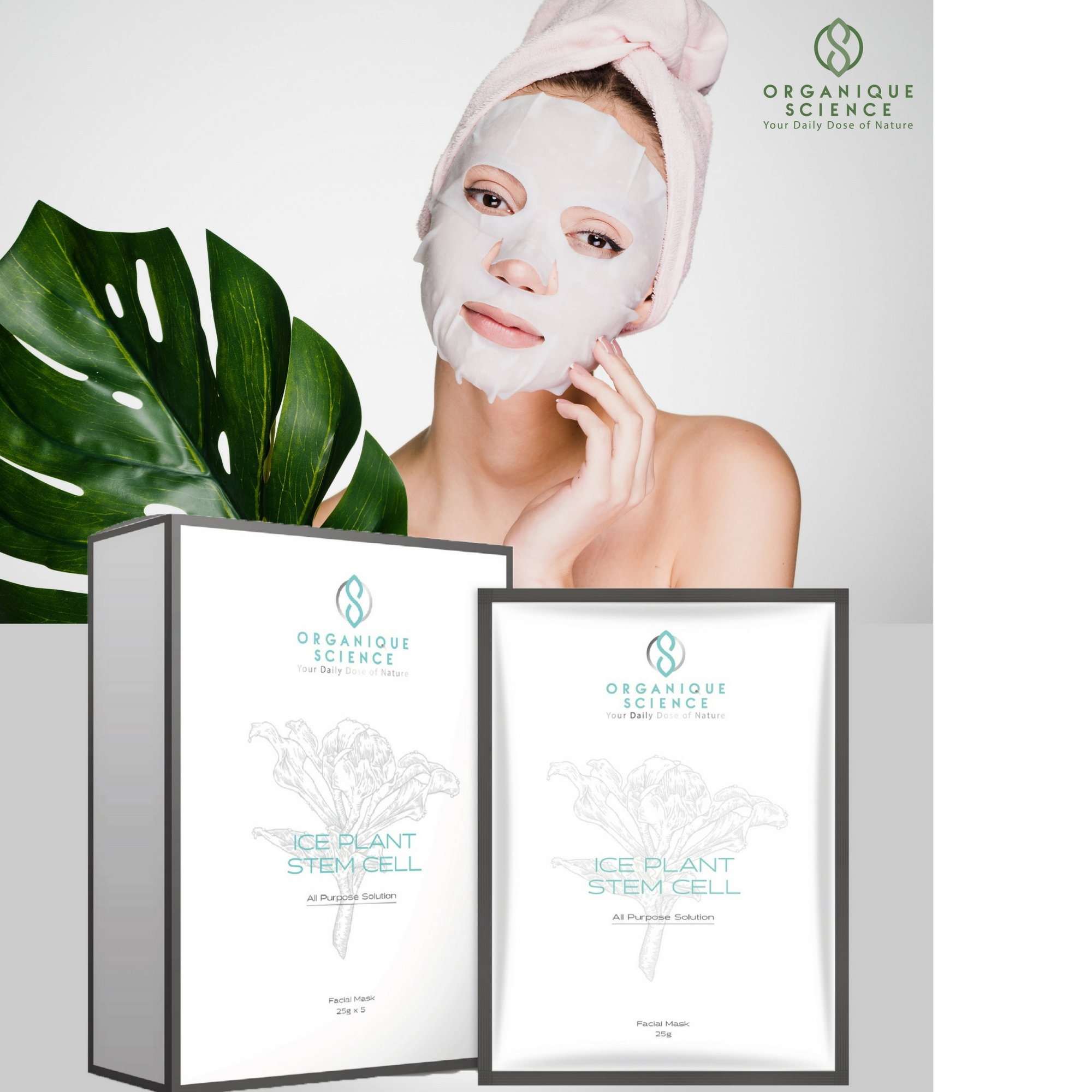 Ice Plant Stem Cell Facial Sheet Mask By Organique Skinlife Foam 130 Gr Science The Award Winning Anti Aging Face For Hydrating Moisturizing Dry Skin