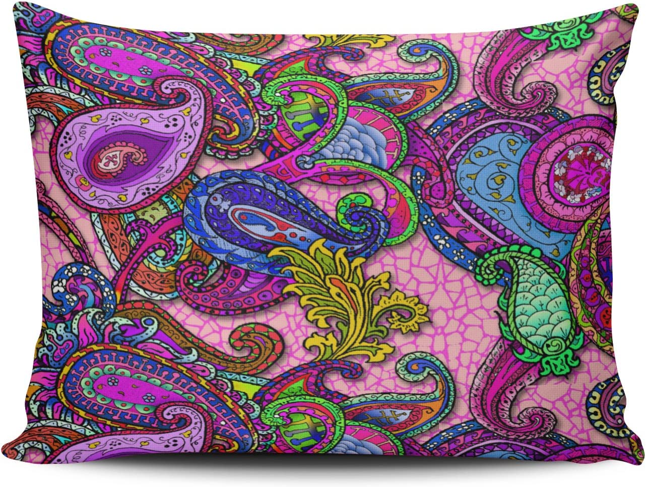 Hoooottle Custom Melange Paisley with Pink Pretty Pillowcase Rectangle Zippered One Side Design Printed 20x30 Inch Queen Throw Pillow Case Cushion Cover