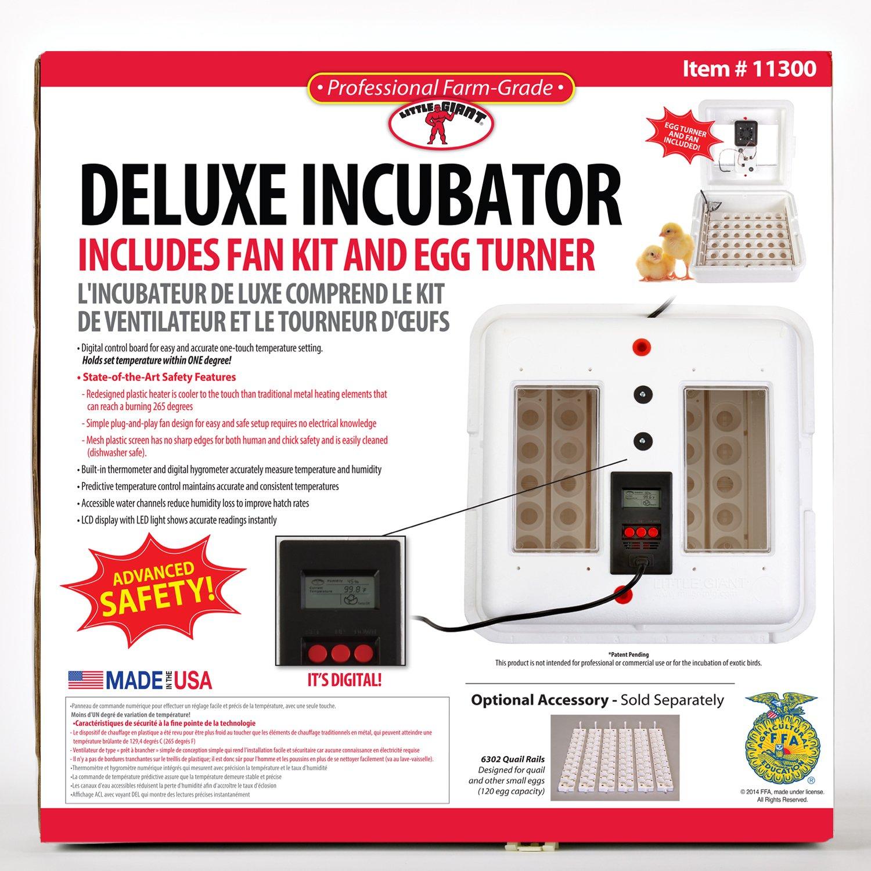Miller Little Giant Egg Incubator 11300 with Fan Kit and Egg Turner by Miller