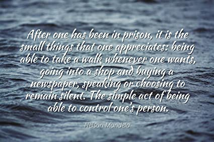 Amazoncom Nelson Mandela Famous Quotes Laminated Poster Print