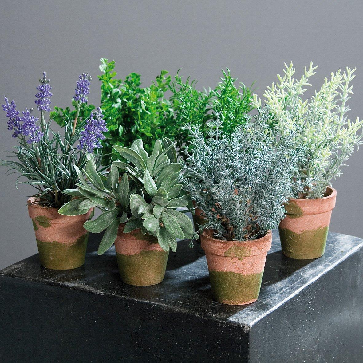 Kräutersortiment im Topf 6 Stück 18-20 cm sortiert Kunstpflanzen von DPI