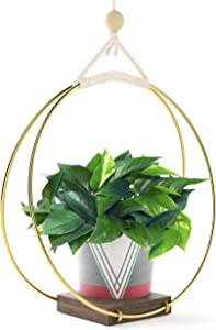 Modern Boho Hanging Planter - Macrame Plant Hanger for Indoor Plants Succulents or Air Plant Holder - Hang from Wall Or Ceiling - Minimalist Plant Shelf - Brass Wood Shelves - Flower Pot NOT Included
