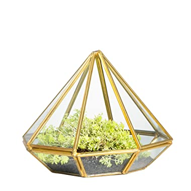 NCYP Handmade Gold Open Glass Geometric Terrarium Brass Diamond Succulent Fern Moss Plant Display Container Balcony Small Planter Indoor Centerpiece for Coffee Table Desk Top Decoration Box