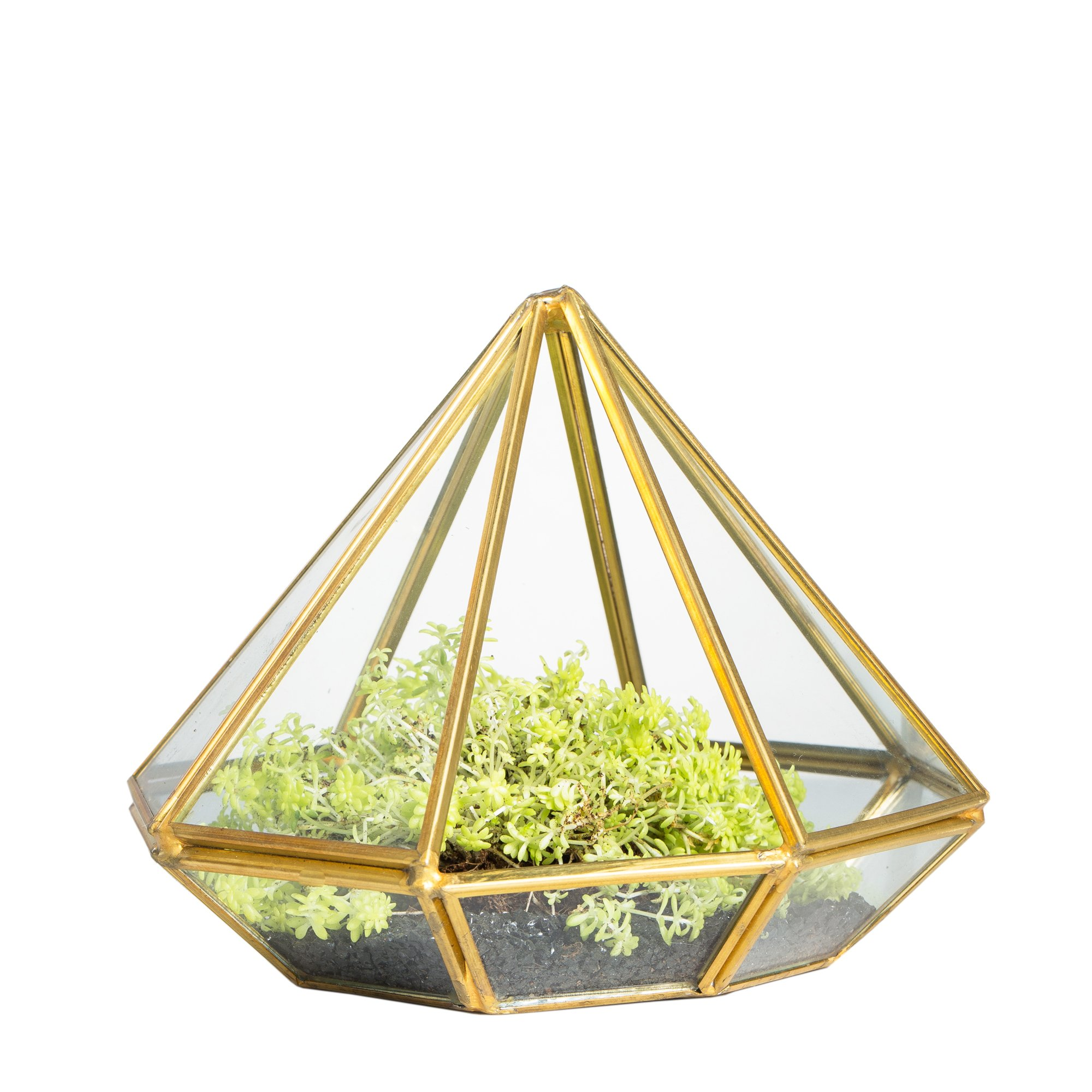 NCYP Handmade Gold Open Glass Geometric Terrarium Brass Diamond Succulent Fern Moss Plant Display Container Balcony Small Planter Indoor Centerpiece for Coffee Table Desk Top Box Without Door by NCYP