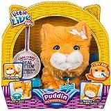 Little Live Pets Puddin, My Dream Kitten