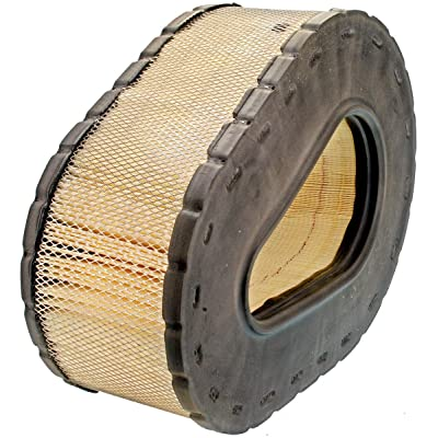 Luber-finer LAF5789 Heavy Duty Air Filter: Automotive
