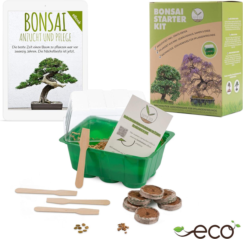 Bonsai Kit incl. eBook GRATUITO - Set de plantas con mini invernadero, semillas y suelo - idea de regalo sostenible para los amantes de las plantas (Semillas: Wisteria + Granada Enana)