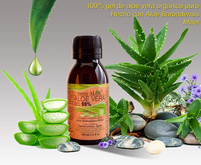 Amazon.com: fuerte ALOE Aloe Vera Gel 100% Pure Organic ...