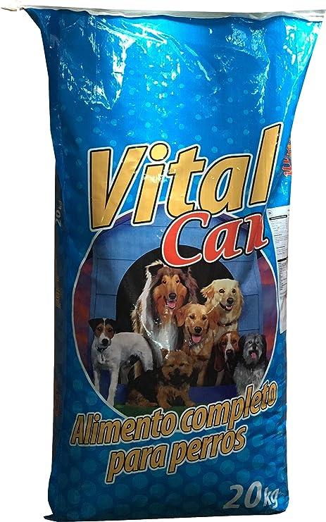 VITALCAN Pienso MENÚ 21/7 Mantenimiento para Perros Adultos - 20 kg