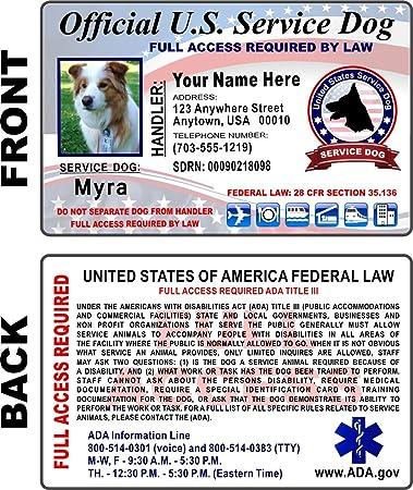 Amazon.com: Tarjeta de Identificación para Perro de servicio ...