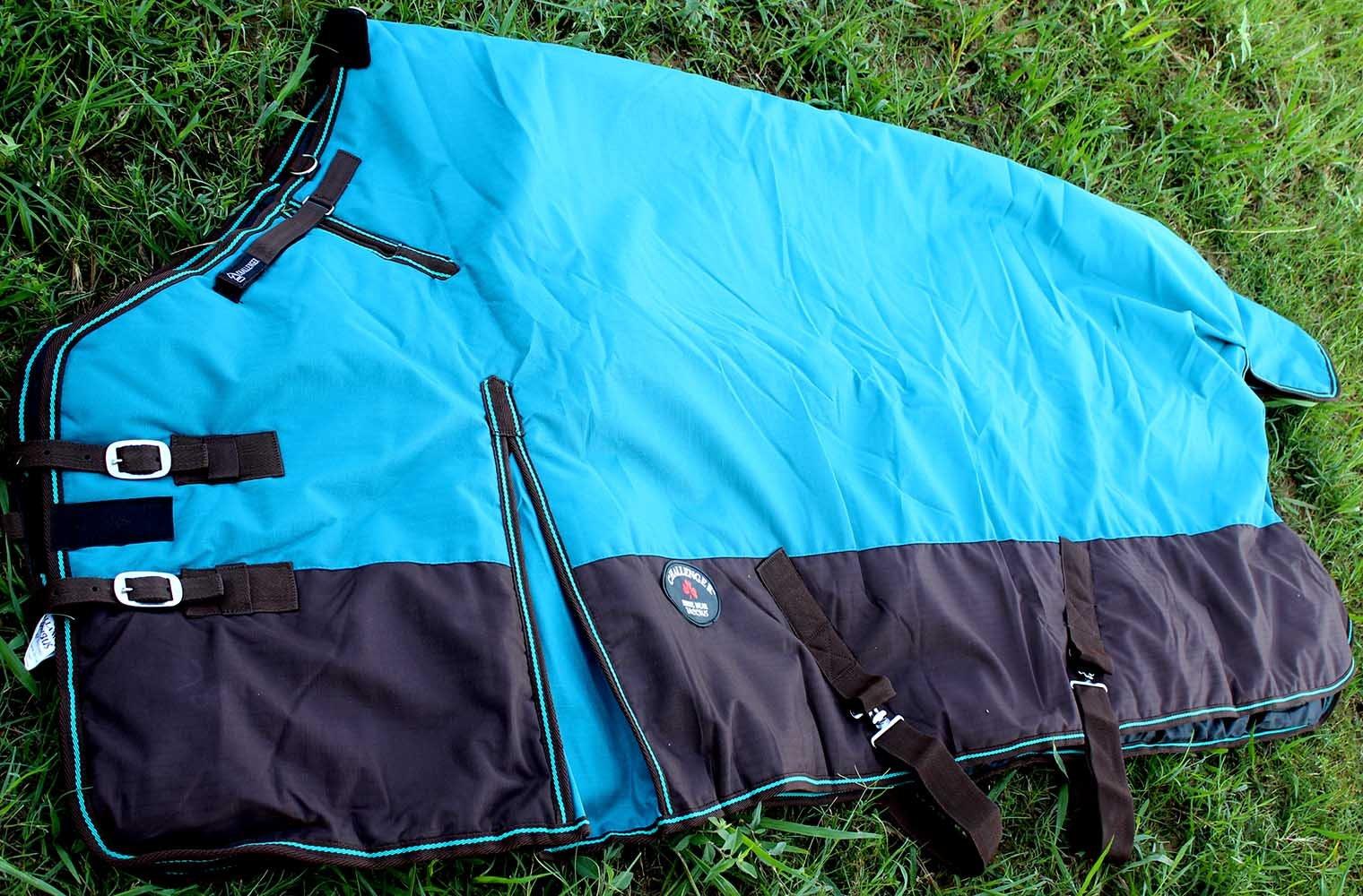 Challenger 78'' 1000D Turnout Horse Heavy Winter Waterproof Blanket Teal 6132