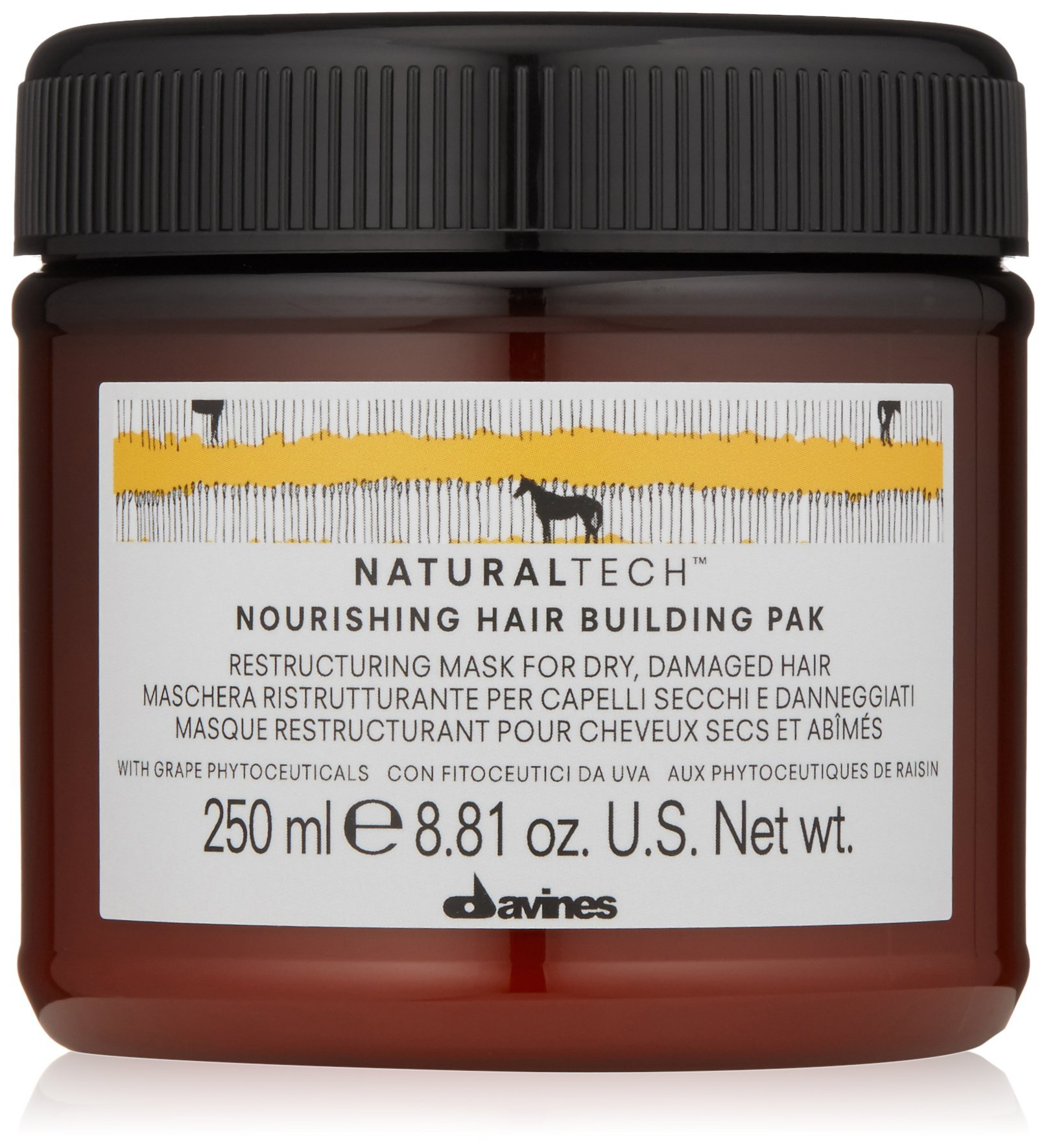 Davines Naturaltech Nourishing Hair Building Pak 250 ml product image
