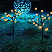 2-Pack Jack & Rose LED Solar Powered Garden Lights
