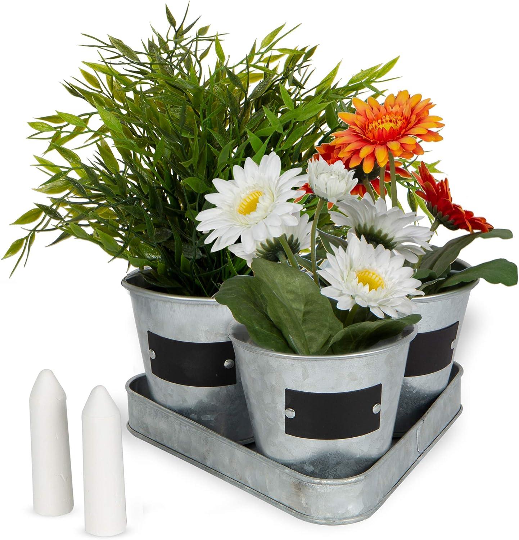 Amazon Com Large Galvanized Chalkboard Basket Bucket Planters Indoor Outdoor Set Of 3 Flower Herb Pot Succulent Plant Tray Garden Outdoor