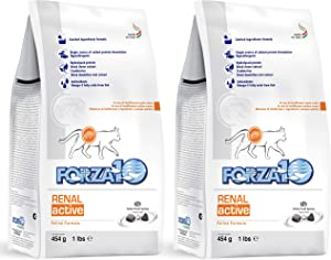 Forza10 Active Kidney Renal Diet Dry Cat Food for Adult Cats, Cat Food Dry for Heart and Kidney Problems, Wild Caught Anchovy Flavor (2 Pounds)