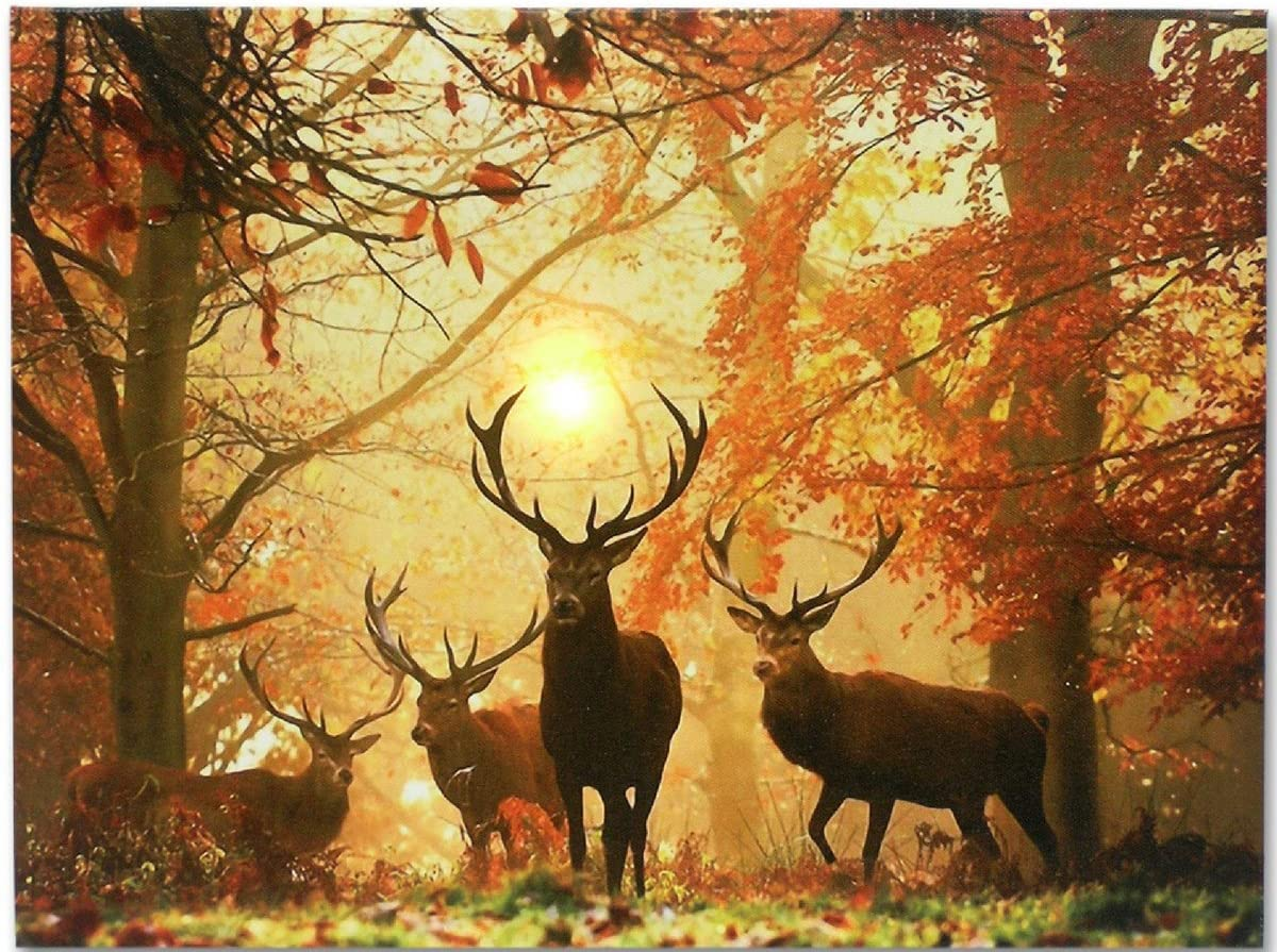 Amazon Com Deer Picture Led Big Buck Wrapped Canvas Print White Tail Deer In Autumn Forest Wildlife Wall Decoration Deer Decor Glowing Canvas Picture Posters Prints