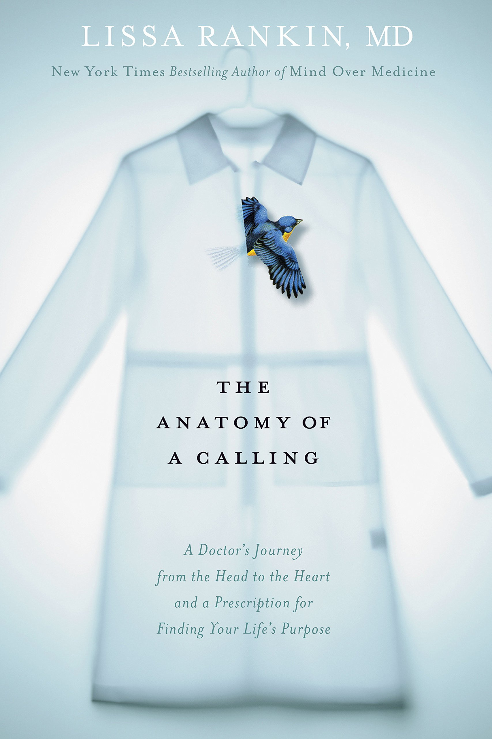 The Anatomy Of A Calling A Doctors Journey From The Head To The