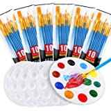 Painting Brush Palette Set, with 6 Packs of 60 Brushes and 6 Palettes ,Nylon Brush Head, Suitable for Oil Watercolor…