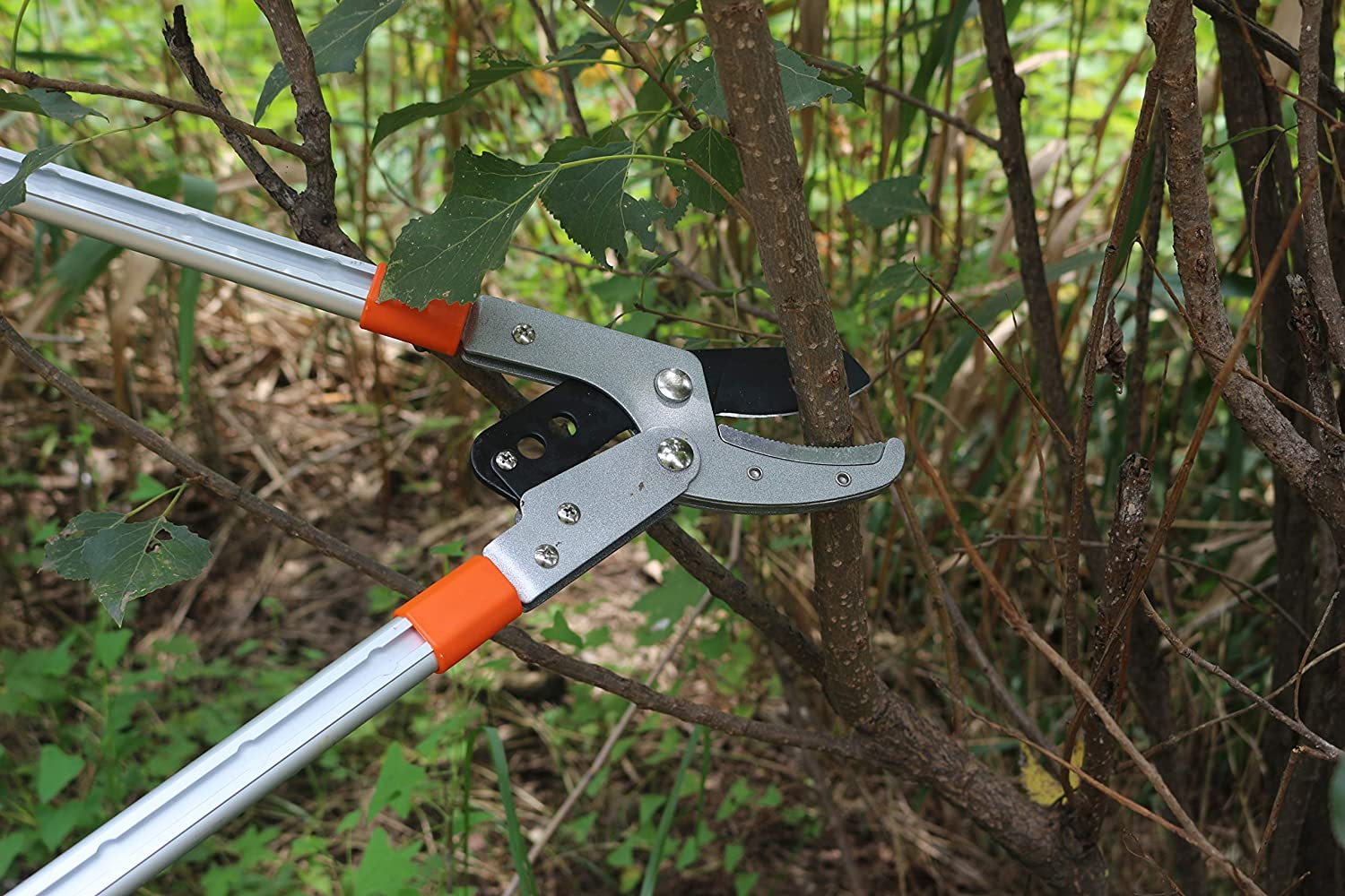 THANOS Bypass Hand Pruners for Gardening Farming Arboriculture Pruning Shears with Ergonomic Handles,SK-5 Steel Blade,Garden Clippers with Shock-Absorbent Spring /& Safety Lock Flower Arranging