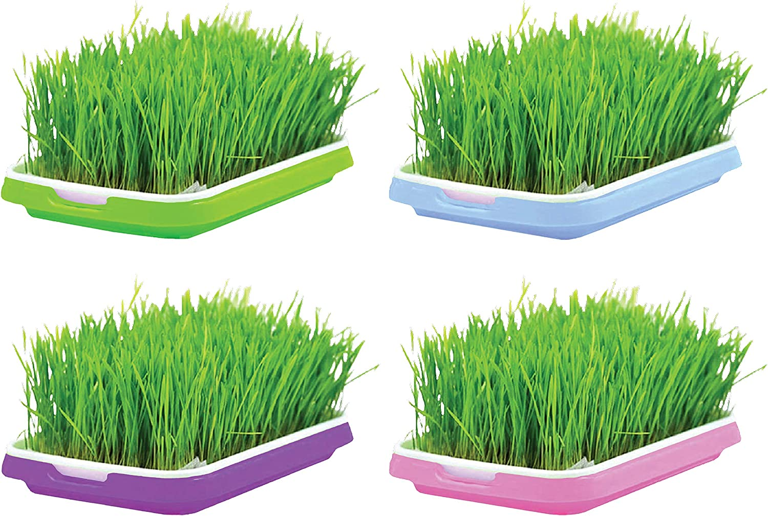 Seed Sprouter Trays (Each Color 1 Tray) for Microgreens Multiple Type Seeds with Grid Mesh and Water Storage Container, PP Food-Grade, BPA Free, High Capacity for Outdoor Indoor Home Nursery Grower