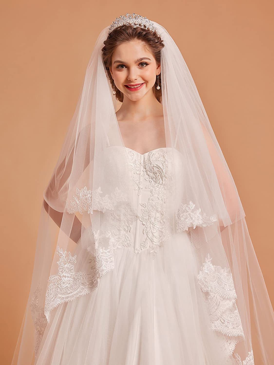 AW 2T Ivory Cathedral Wedding Veil Lace Appilque Edged Tulle Bridal ...