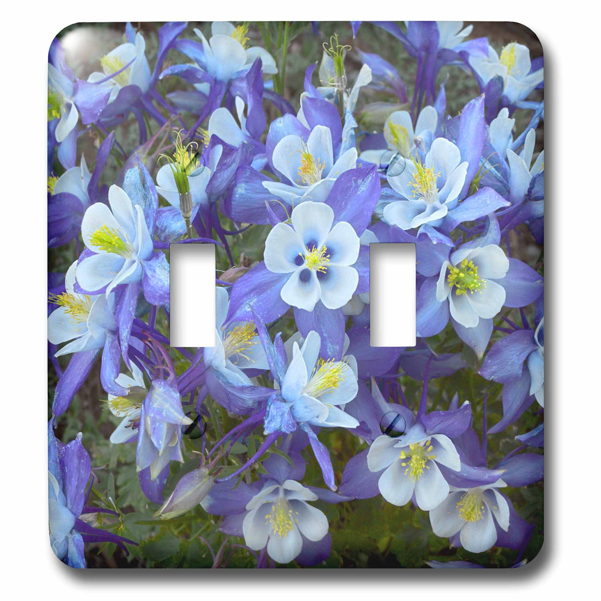 3dRose lsp_259147_2 Rocky Mountain Columbines, Colorado, USA Toggle Switch, Multicolor