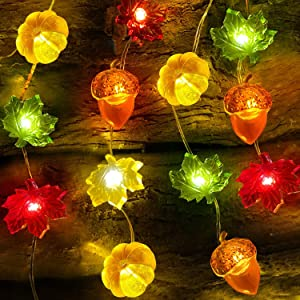 2 Pack 3D Pumpkin Maples Acorns String Lights Thanksgiving Decor, 20Ft 60 LED Thanksgiving Lights Battery Operated Warm White Fall Garland with Lights Decorations for Indoor Thanksgiving Harvest